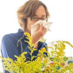 Allergia: Una Donna Allergica al Polline si Soffia il Naso