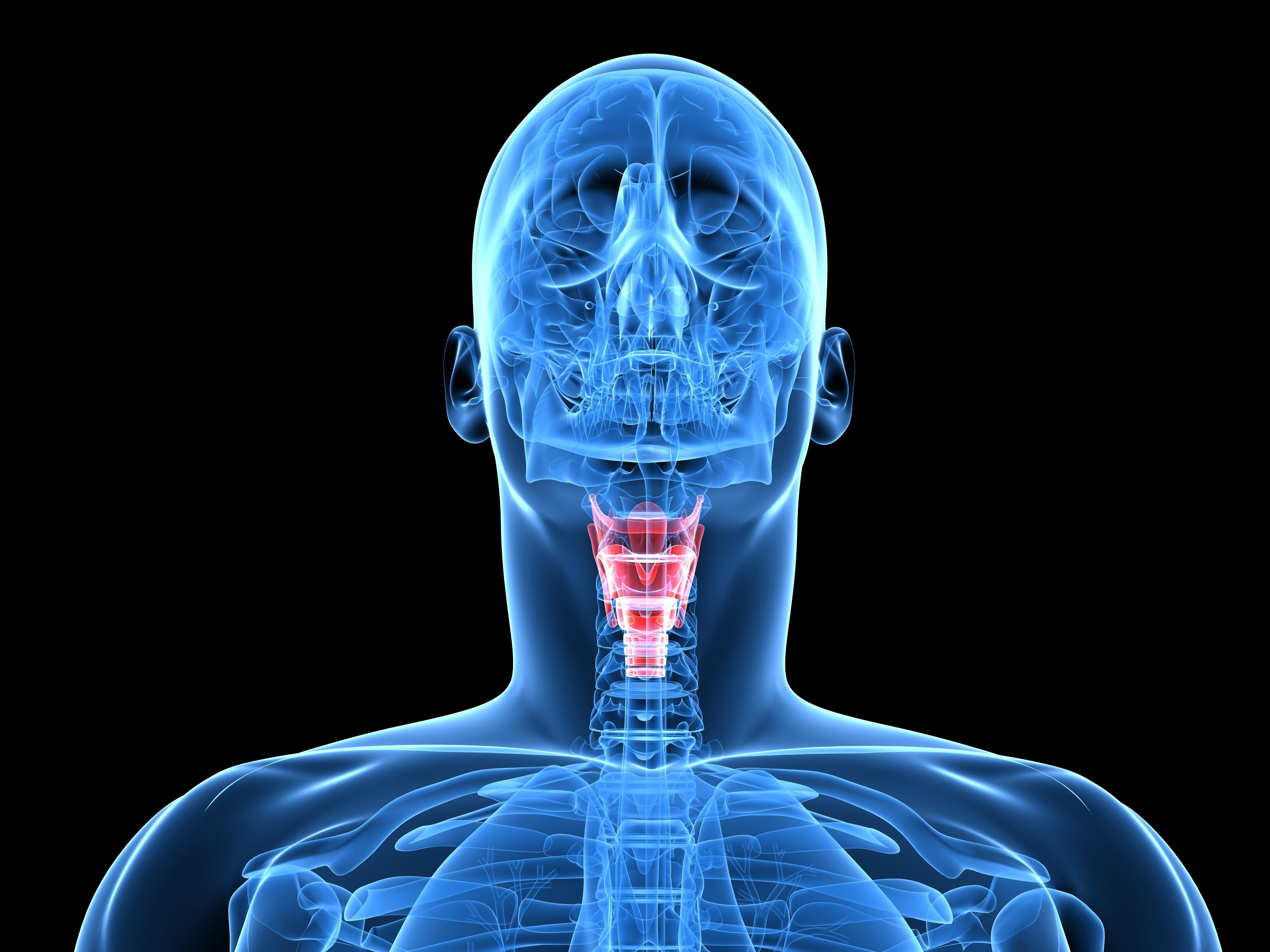 Le principali infezioni dell'apparato respiratorio