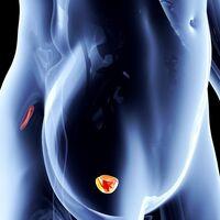 Prostata | Pazienti.it