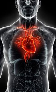 Angiogramma | Pazienti.it