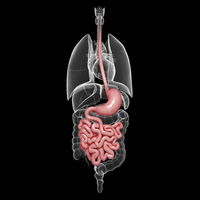 Endoscopia capsulare