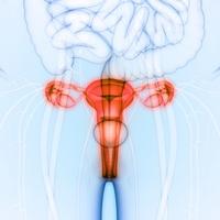 Diaframma_anticoncezionale   Pazienti.it