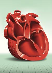 Endocardite | Pazienti.it