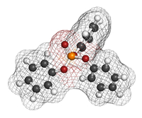 Fosfatasi alcalina (ALP) | Pazienti.it