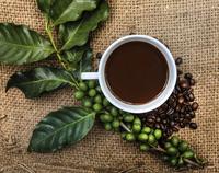 Caffè verde | Pazienti.it