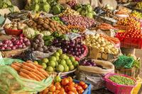 Alimenti e prodotti biologici