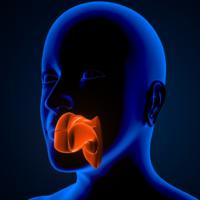 Adenoidi | Pazienti.it