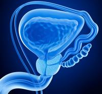 Ipertrofia prostatica | Pazienti.it