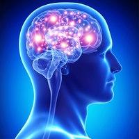 Quoziente intellettivo | Pazienti.it