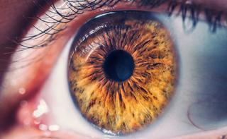 Edema della retina