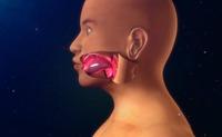 Morbo di Quincke | Pazienti.it