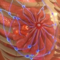 Metastasi | Pazienti.it