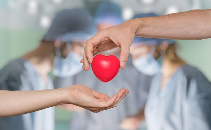 Primato italiano per le donazioni di organi: tutto merito delle donne