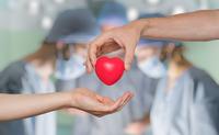 Donazione di organi   Pazienti.it