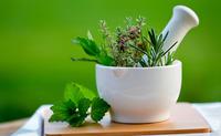 Erbe officinali (e piante officinali) | Pazienti.it