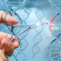 Gene X e Y, Malattie Genetiche e Clonazione