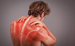 Tensione muscolare