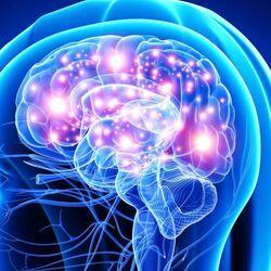 Cervello Colpito da una Sincope Vagale