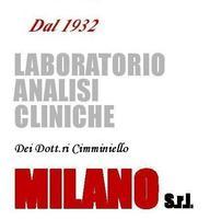 Antonella Cimminiello