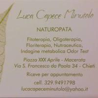 Luca Capece Minutolo