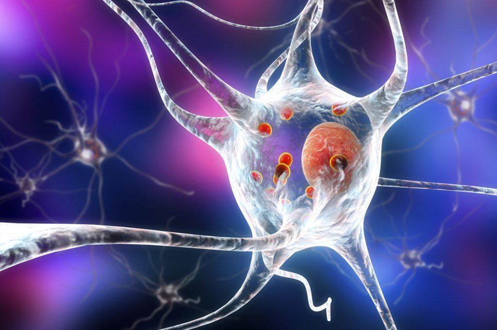 Farmaci per la prostata curano il Parkinson