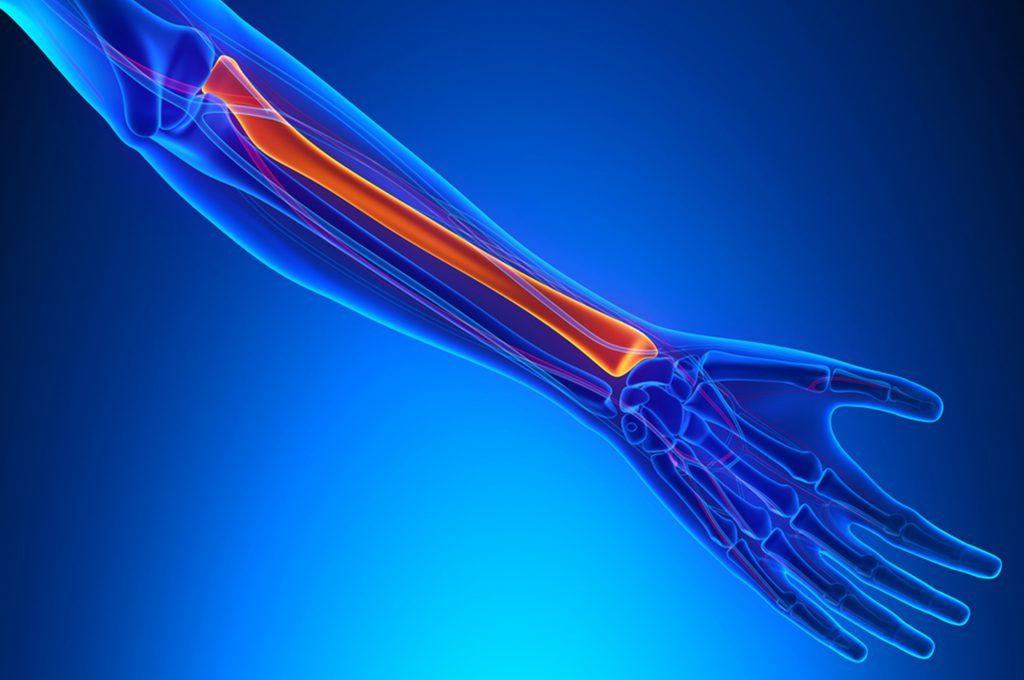 Vitamina B e fratture delle ossa: perché aumenta il rischio