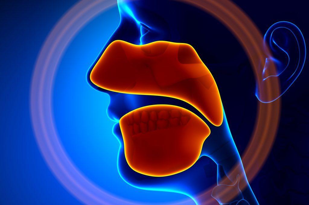 Sinusite mascellare: sintomi e cure