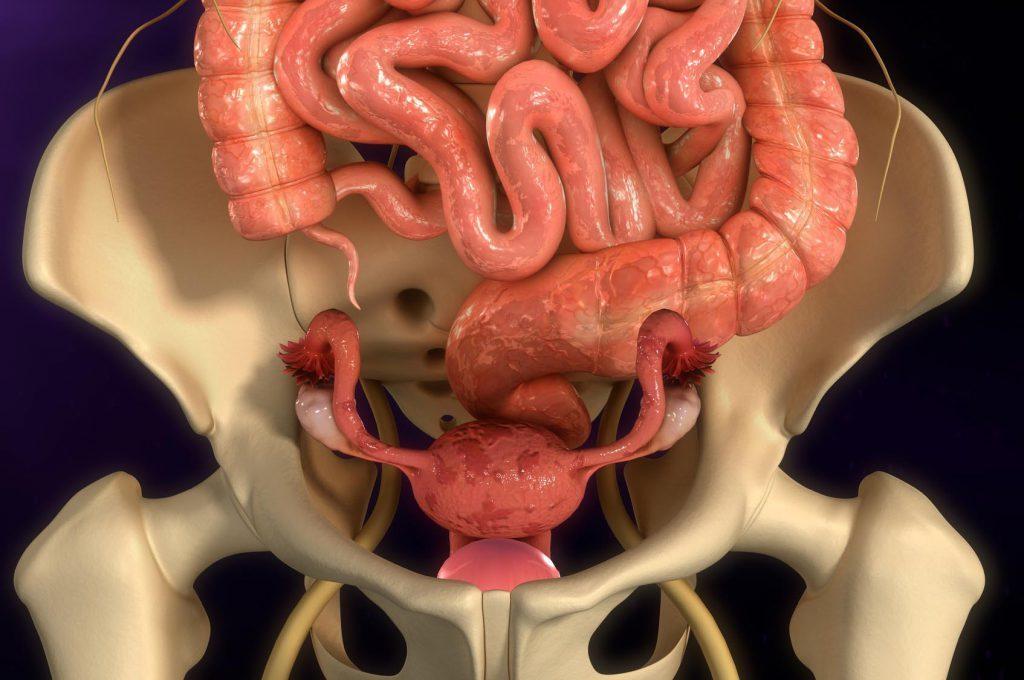 Endometriosi: Cosa Mangiare