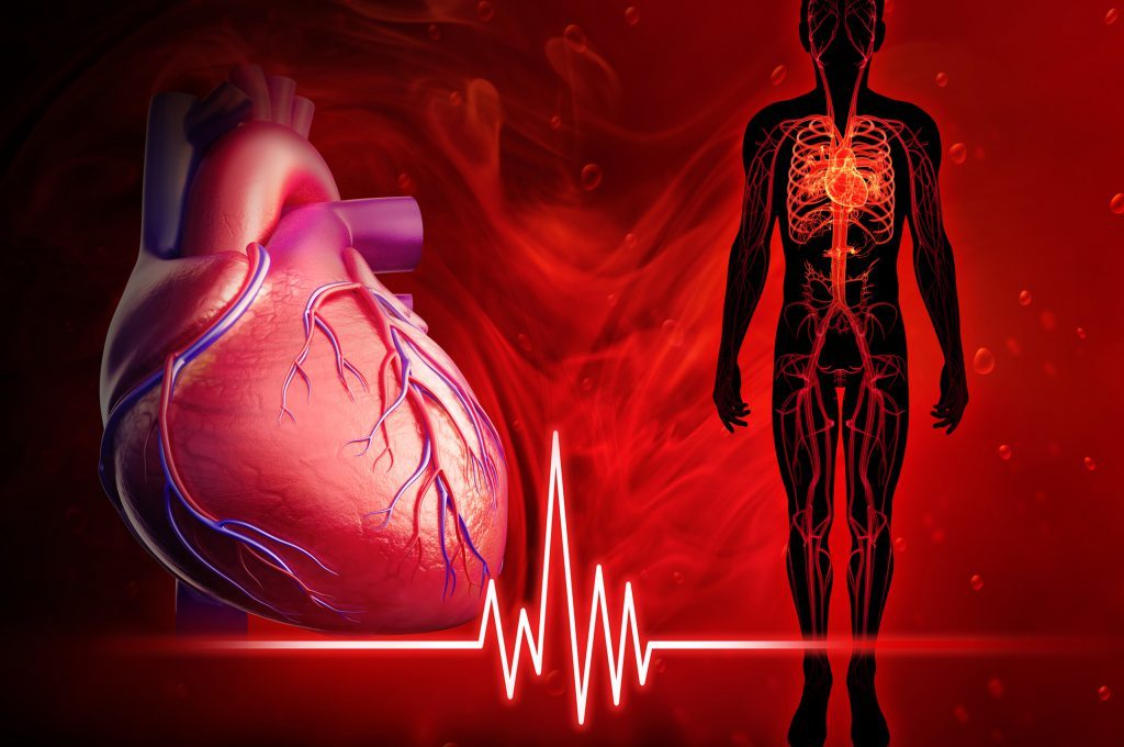 Ecocolordoppler cardiaco: come si esegue, come funziona, quando farlo