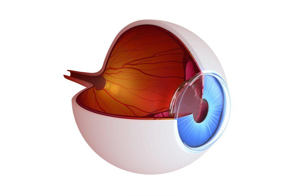 Glaucoma: i Tipi. la Diagnosi e le Cure