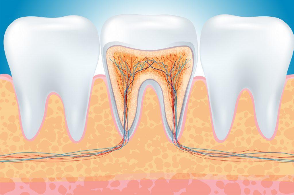 Rimedi naturali contro il mal di denti