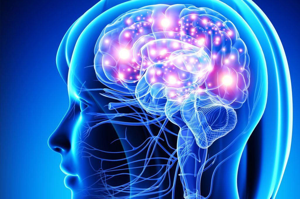 parole crociate fa bene al cervello?