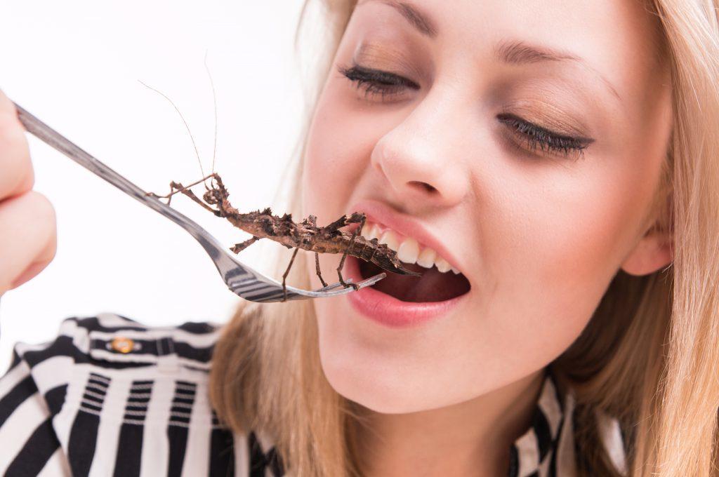 Carne di insetti