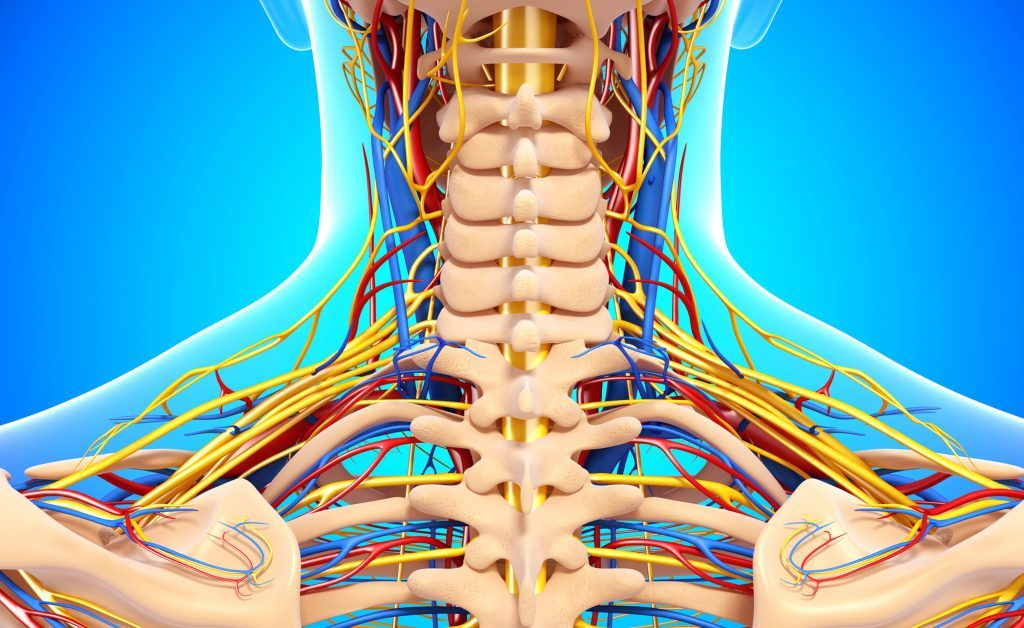 polineuropatia: una lesione dei nervi periferici