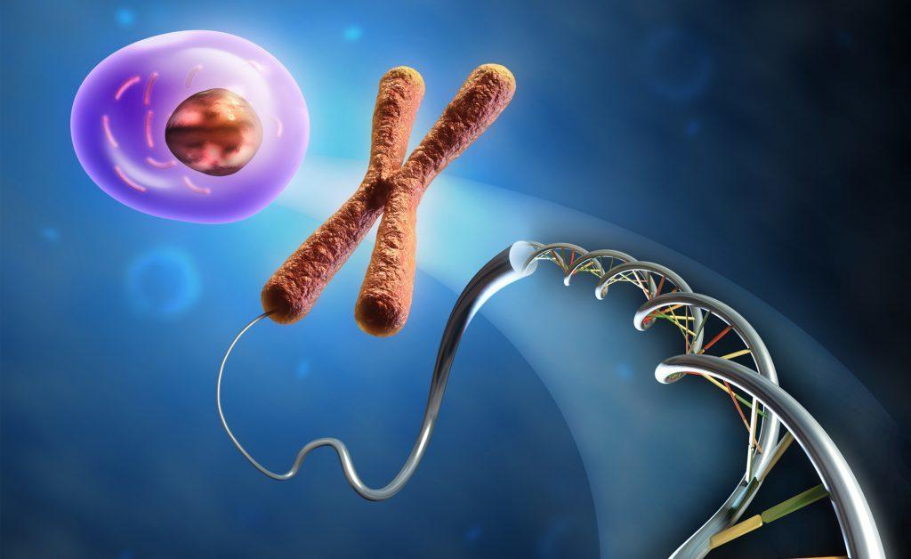 malattie autoimmuni: sono legate?