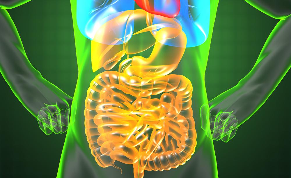 Rimedi naturali per la digestione