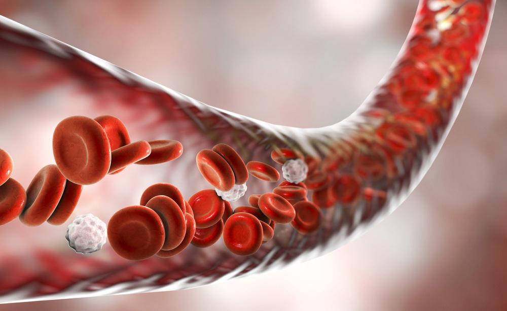 Analisi del Sangue: i Valori da Controllare