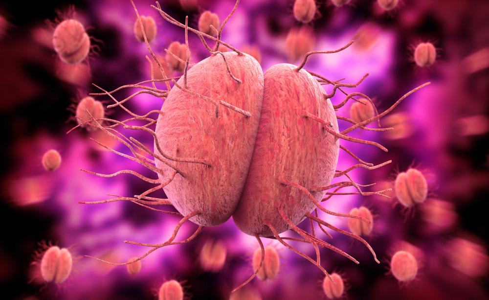 Meningococco e Meningite: i sintomi della malattia