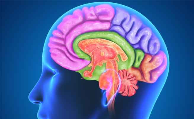 come aumentare la dopamina naturalmente