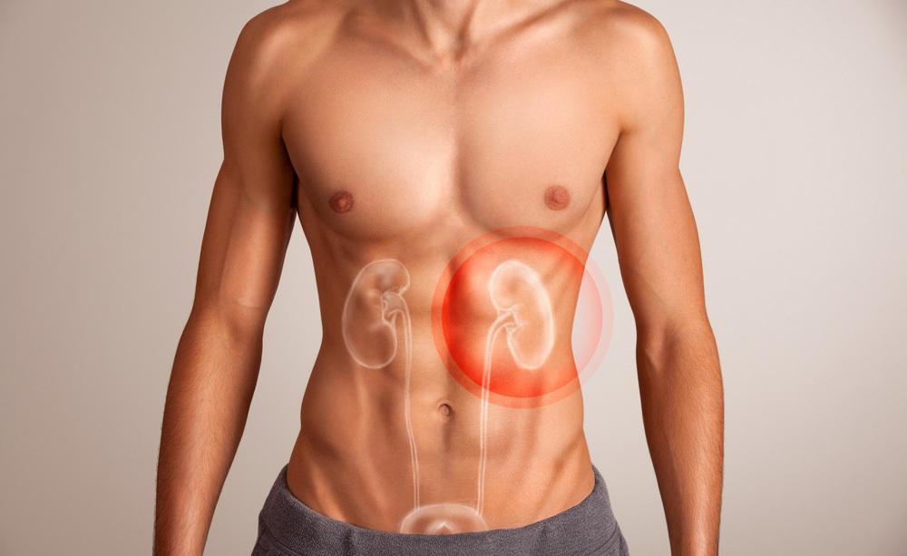 reni e pressione alta: il legame
