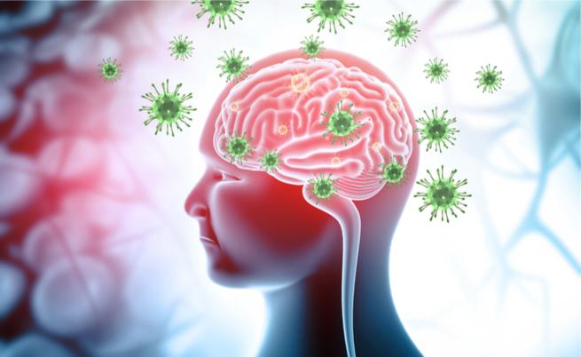 herpes e demenza: qual è il legame