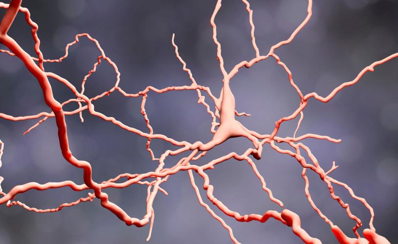 Schizofrenia e Autismo: esiste un Legame?
