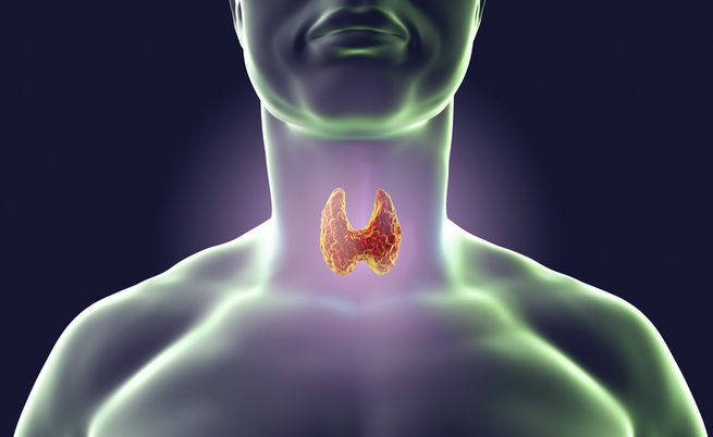 test tiroide