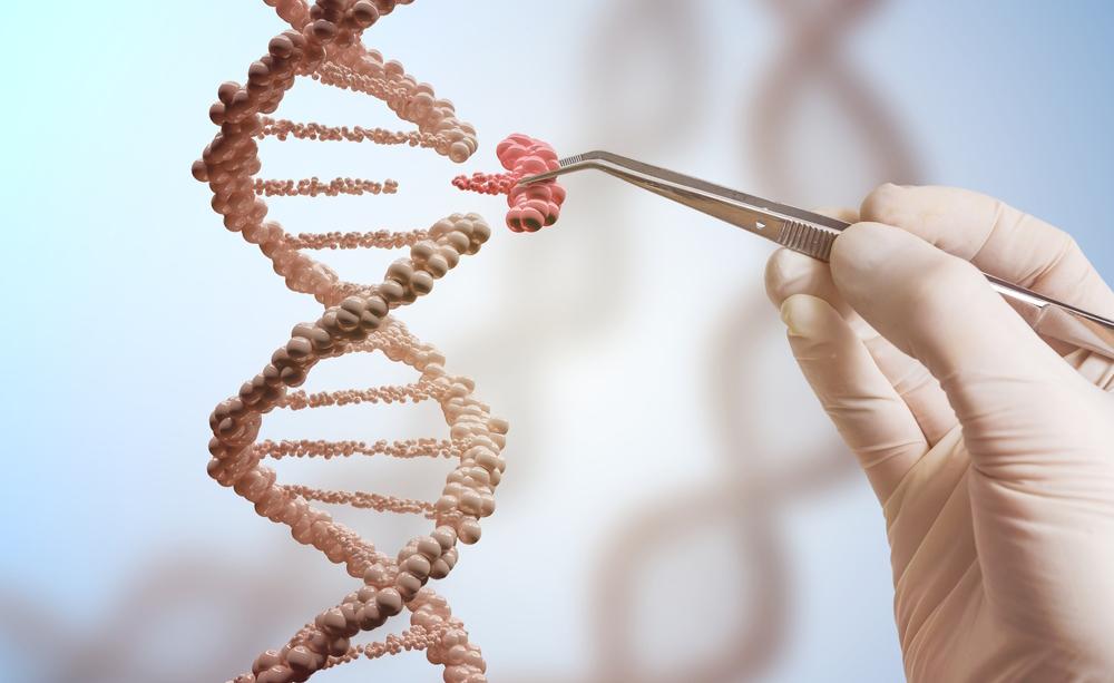 autismo e genetica