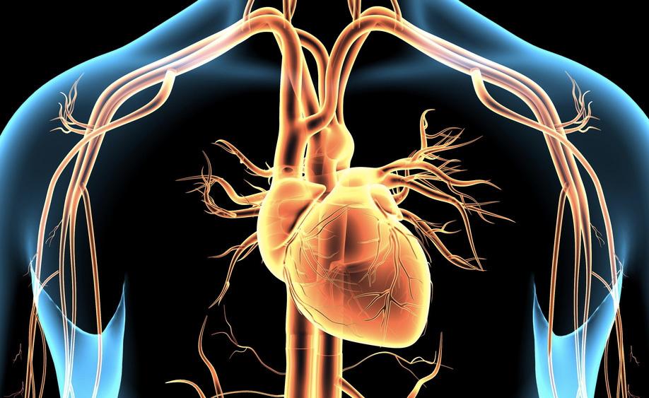 angina-pectoris: le cause