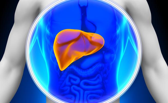 malattie autoimmuni del fegato: sintomi, cause e terapie