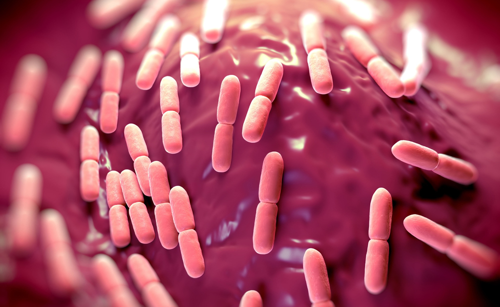 Lactobacillus paracasei LC11: contro la Cistite