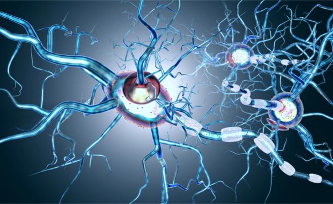 sclerosi multipla, sole e vitamina D