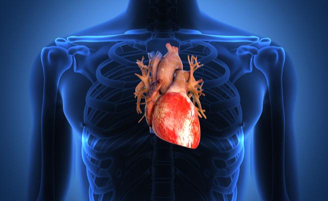 Ceci: i legumi per la salute del cuore