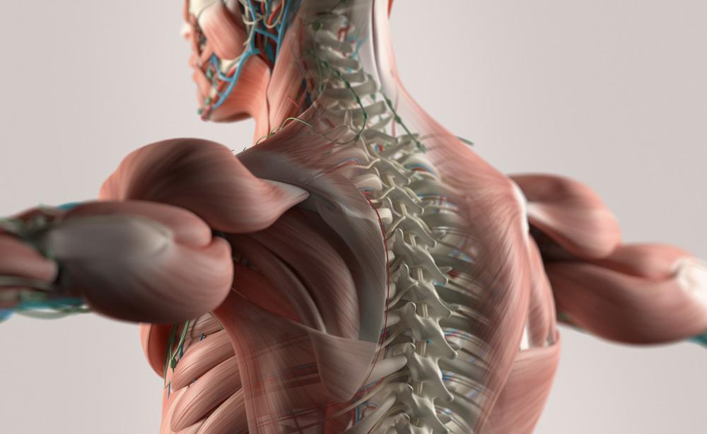 Massaggio Decontratturante: ecco come Eseguirlo